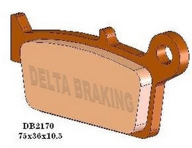 Brzdové desky zadní BETA 125/350 ALP (05-09)
